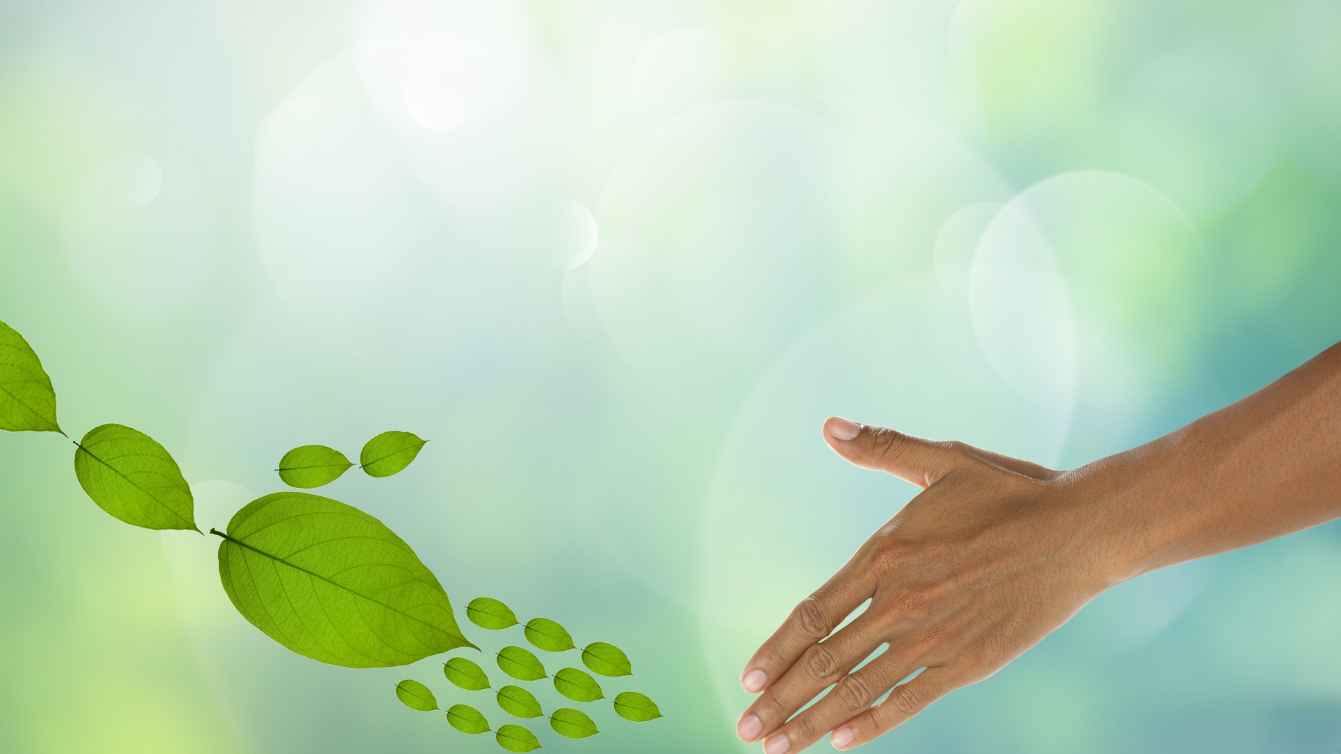 Ways To Make Your Small Business More Environmentally Friendly here.